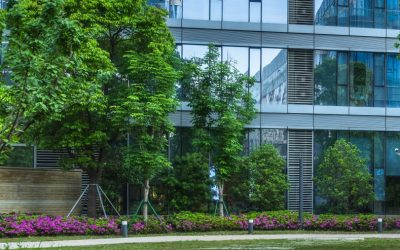 Commercial Landscape & Ground Maintenance Dublin