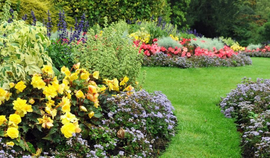 Landscape Gardener Dublin