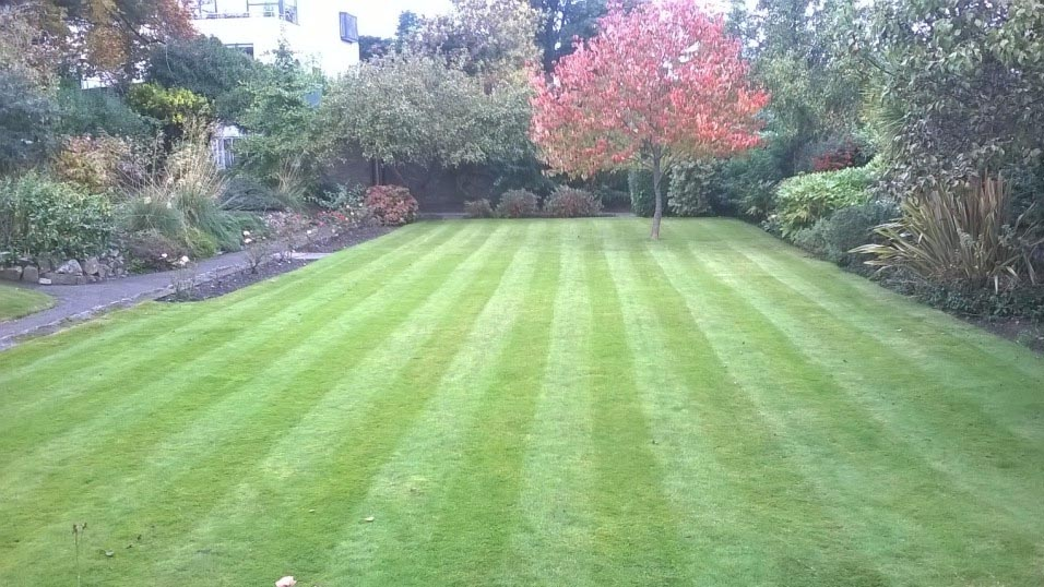 Garden Landscaping in North Dublin Done the Easy Way