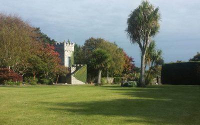 Dublin Garden Design & Garden Maintenance