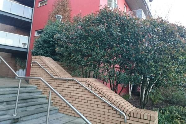 Landscaping for Resident Associations Dublin