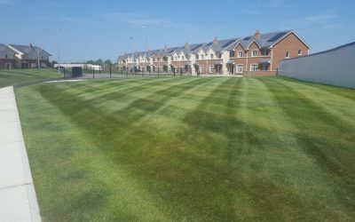 Commercial Grass Cutting & Ground Maintenance Dublin